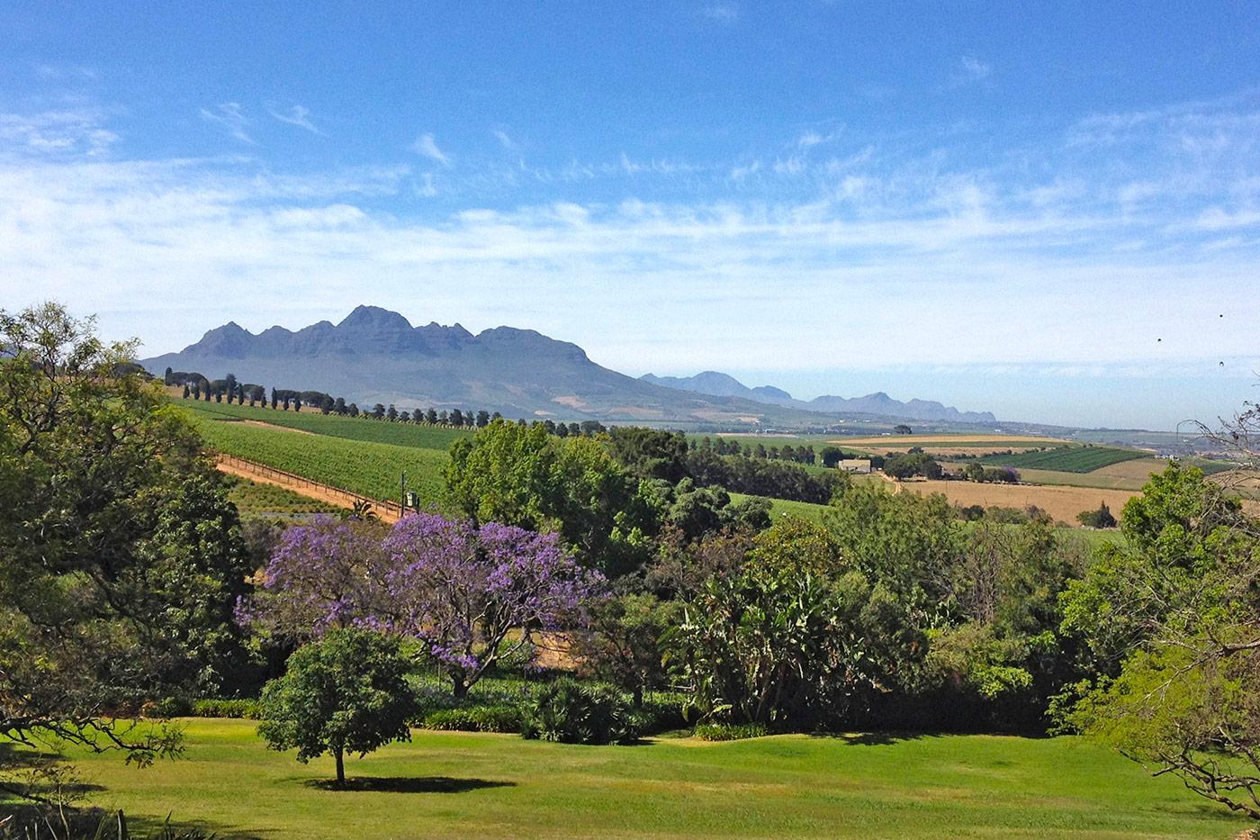 Sugarbird Manor Guesthouse Stellenbosch, Ausblick