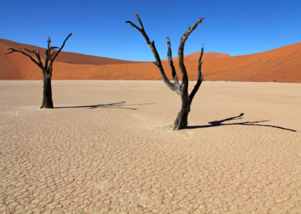 Deadvlei in Namibia