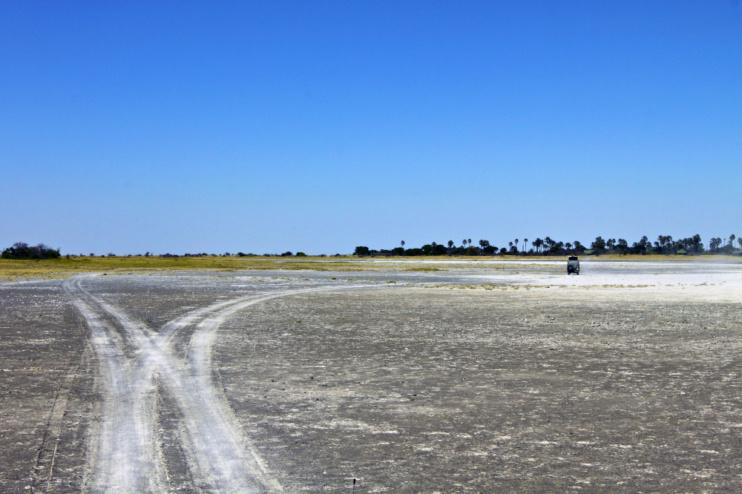 Weggabelung in Botswana, Makgadikgadi Pan Game Reserve