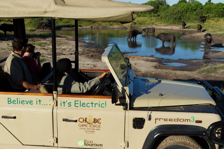 Chobe Game Lodge, Safari im Elektrofahrzeug
