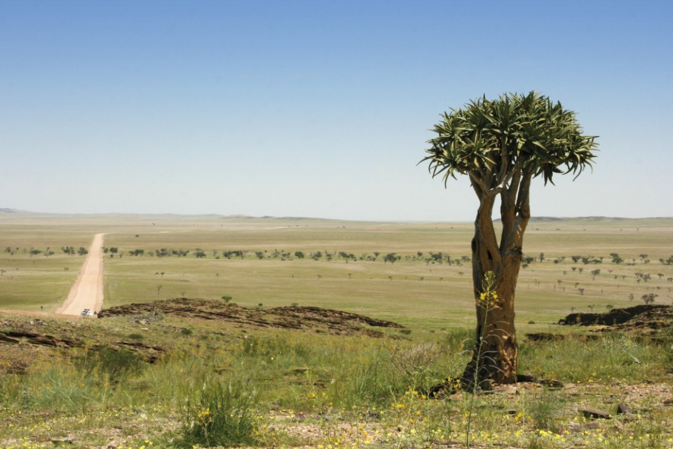 Luxus der Weite in Namibia