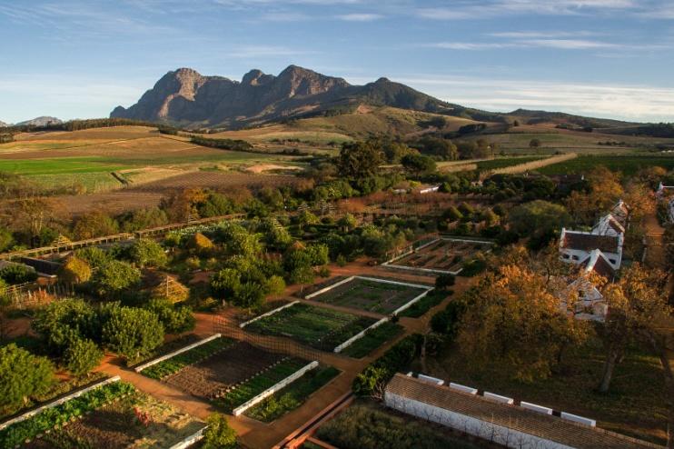 Der farmeigene Garten für Obst und Gemüse, Babylonstoren