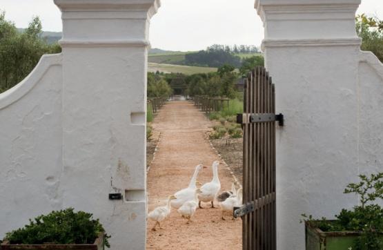 Tor zum Farmgarten des Babylonstoren