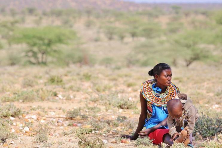 In der Weite des Samburu National Reserve