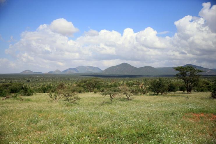 Landschaft im Samburu-Reservat