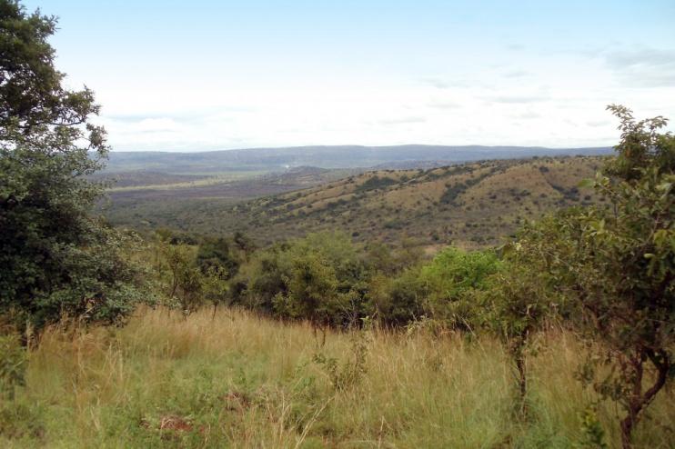 Landschaft des Akagera NP