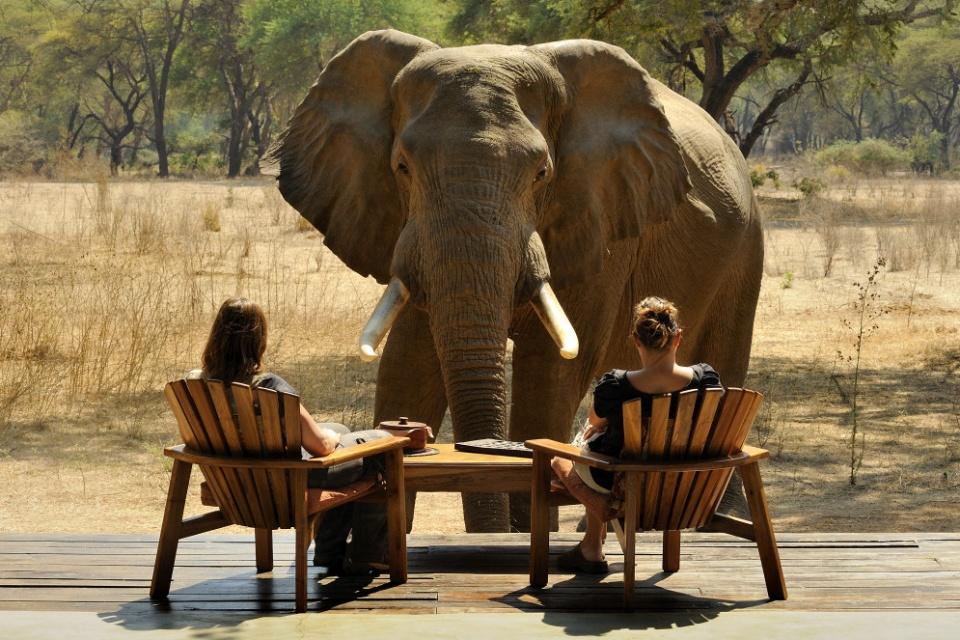 Höhepunkte im Lower Zambezi Nationalpark
