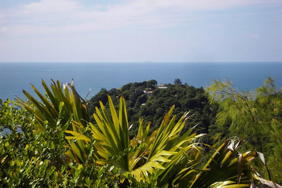 Ausblick auf die Natur und das Meer