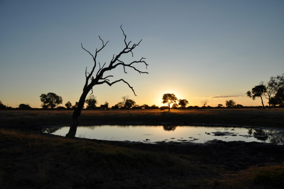 Sonnenuntergang Hwange Nationalpark