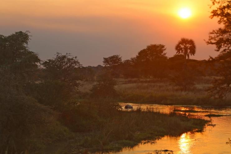 Katavi Sonnenuntergang