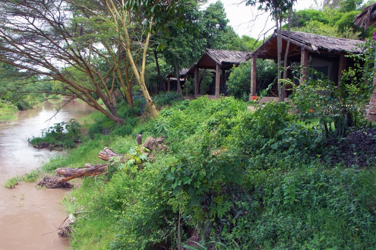 Fig Tree Camp & Talek River