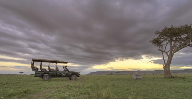 Auf Safari durch die Masai Mara