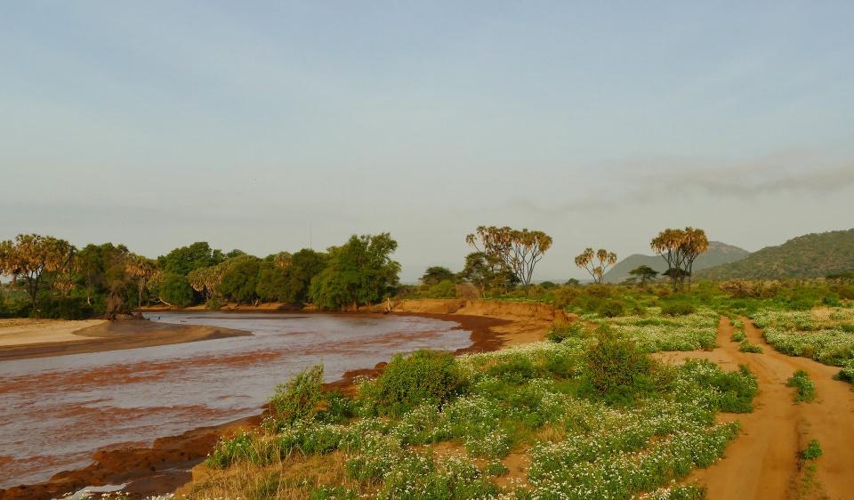 Fluss im Samburu