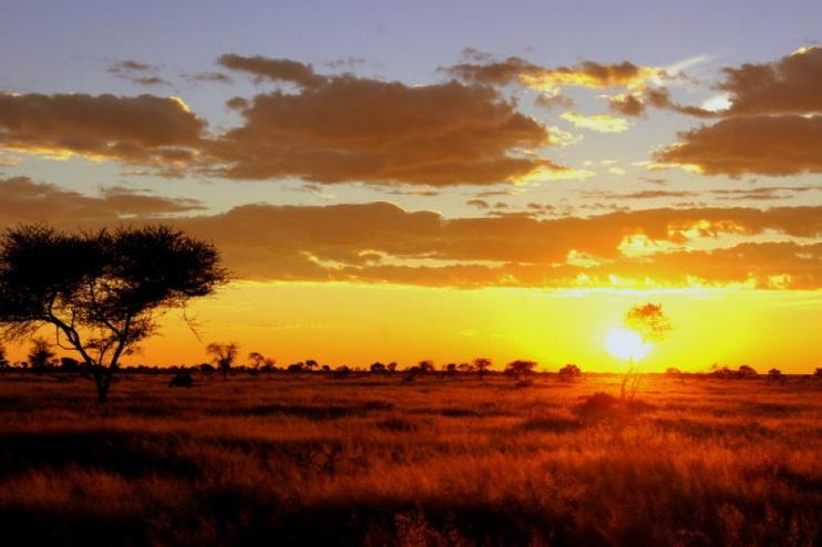Sonnenaufgang bei der Dornhügel Gästefarm