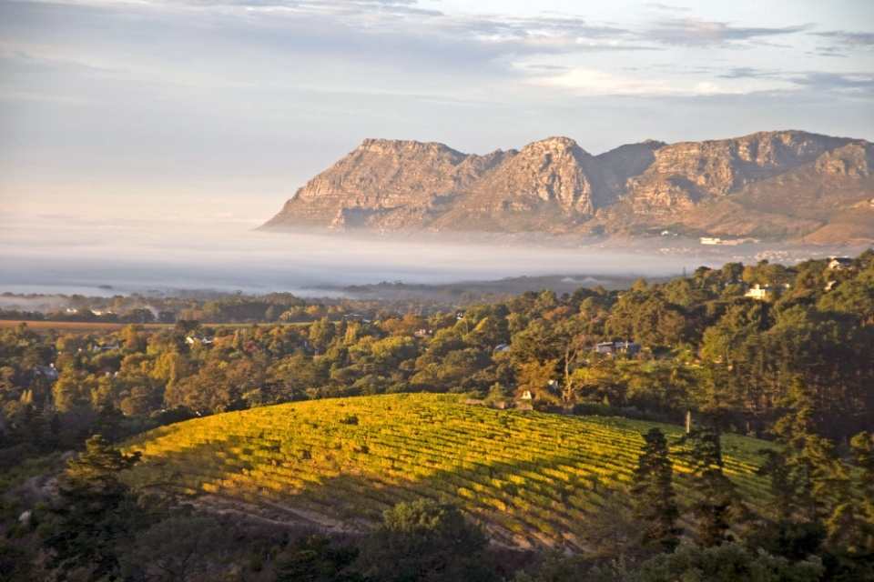 Weingüter und Berge in den Winelands, Cape Wine Route