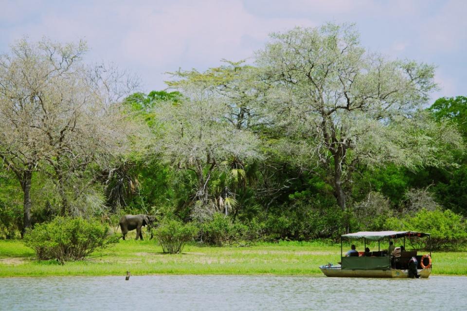 Rufiji River Camp, Bootsfahrt