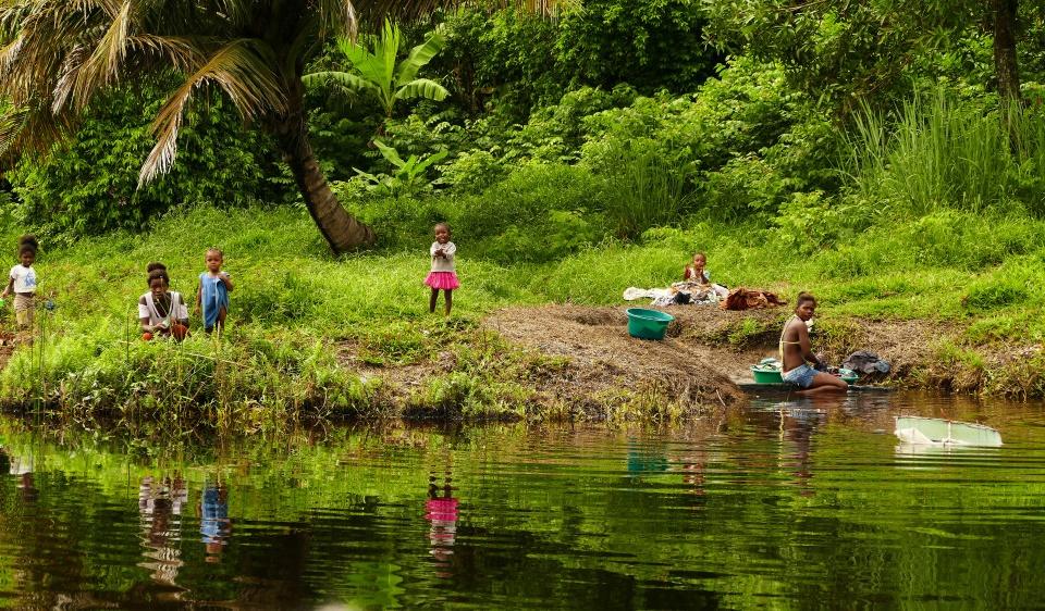 Leben am Flussufer