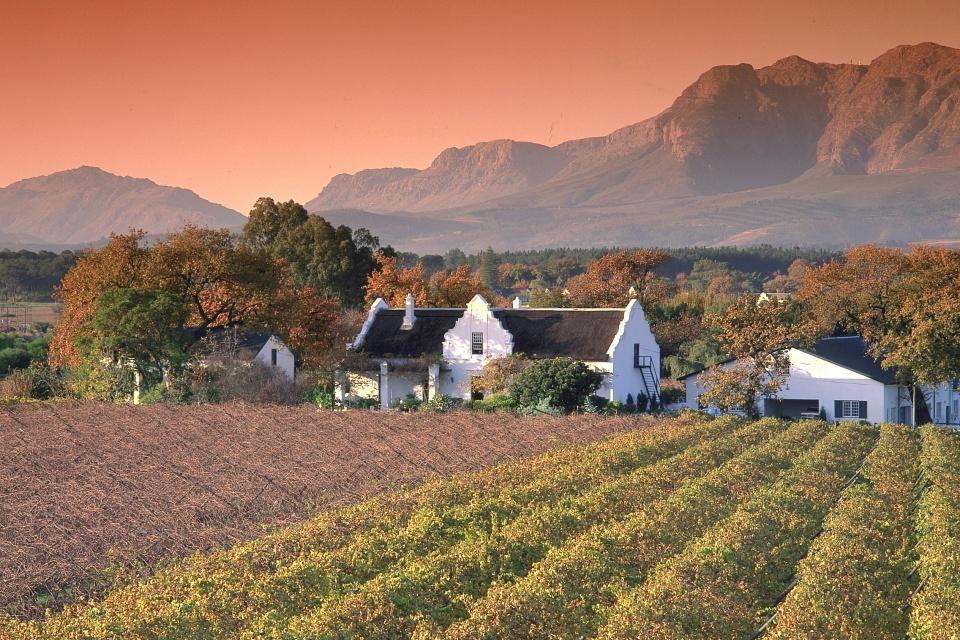 Winelands in Südafrika