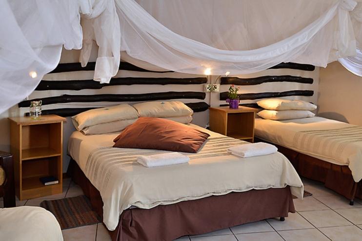 Zimmer im Quivertree Forest Rest Camp