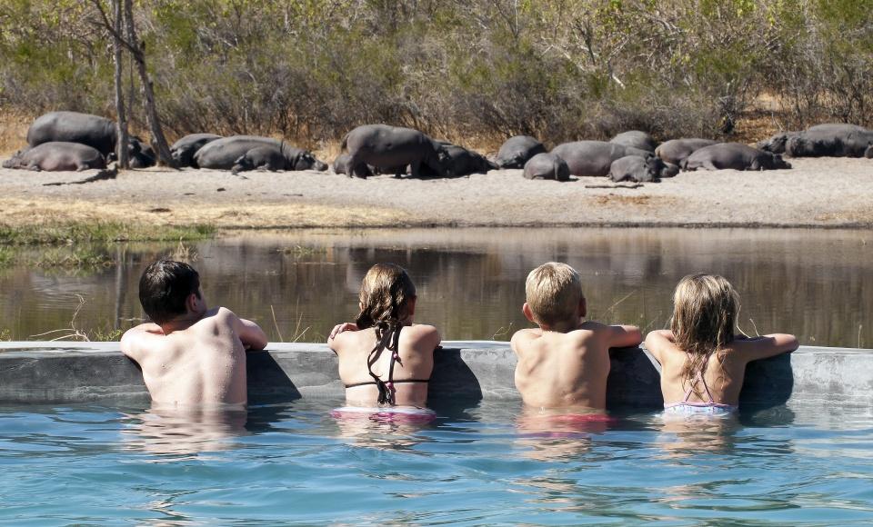 Wildbeobachtung direkt vom Pool aus