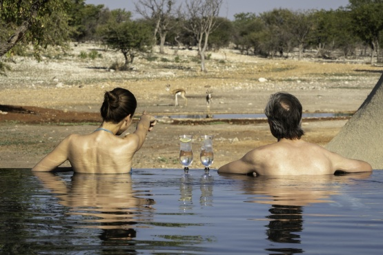 Andersson's at Ongava, Pool